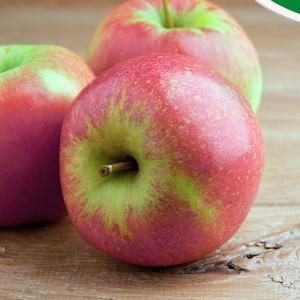 Bio-Elstar appels