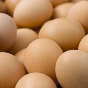 Bio-eieren