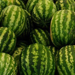 Watermeloenen